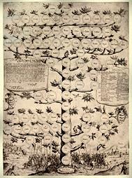 Генеалогическое древо. Старинная гравюра средних веков — увеличить