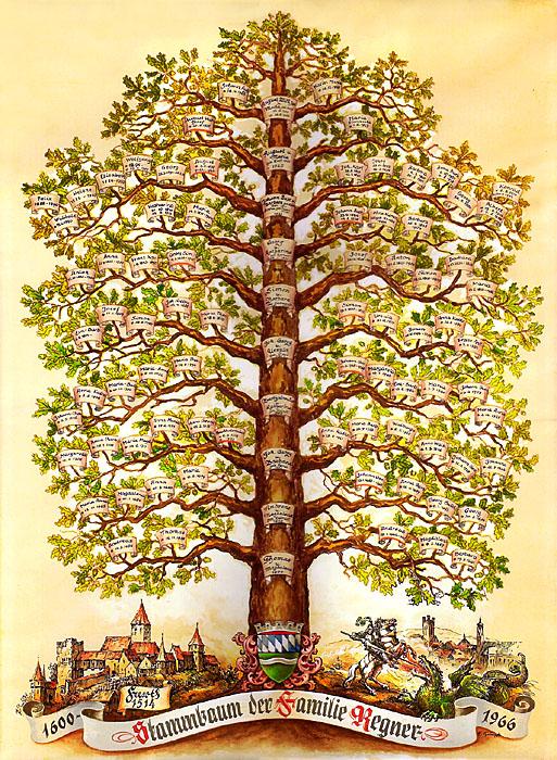 Генеалогическое древо рода